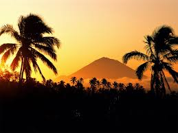 volcano in the distance with palm trees